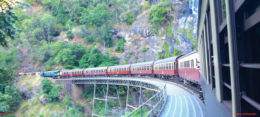 Jungle Train Ride through theRainforest