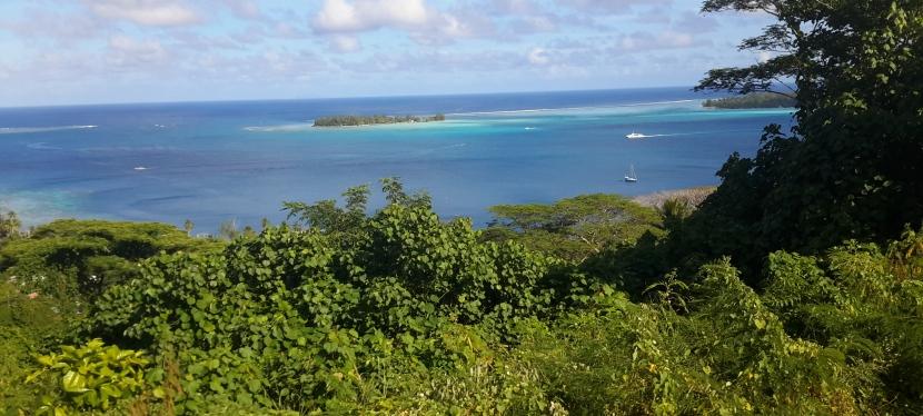 Bora Bora : My Journey through the Pearl of the French Islandgroup.