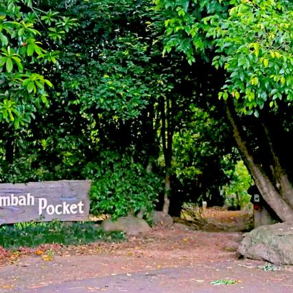 Peterson Creek Walk Entrance